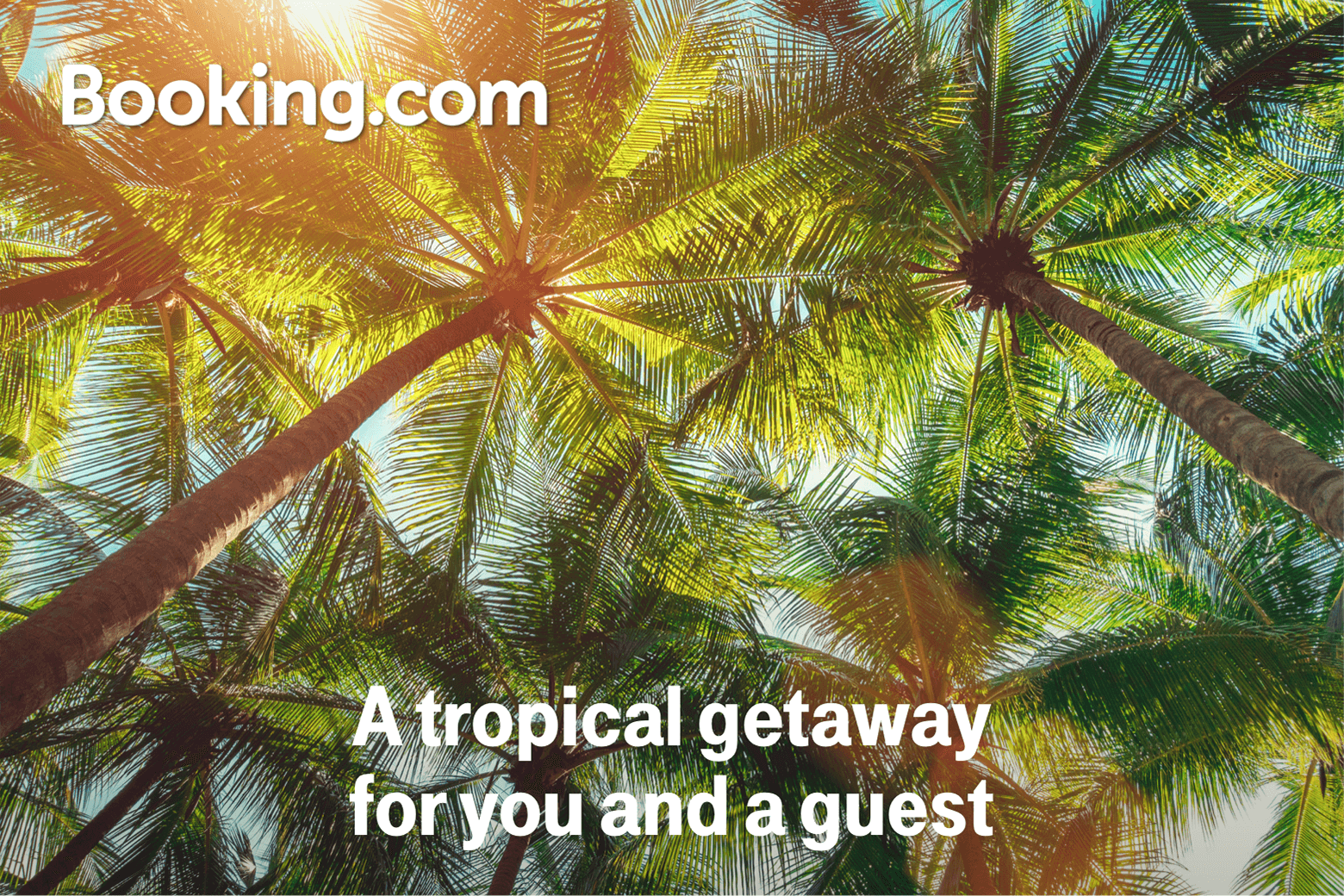 Booking.com. A tropical getaway for you and a guest.